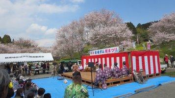 aki_sakura5.jpg
