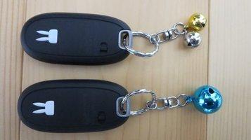 car_key5.jpg