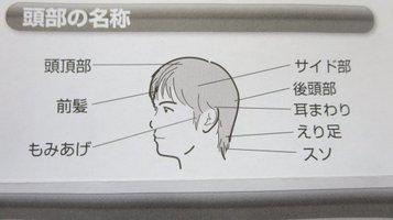 hair_cutter8.jpg