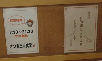 mikawa3.jpg