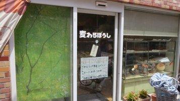 mugiwara1.jpg