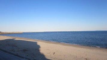 seashore1124a.jpg