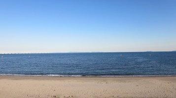 seashore1124b.jpg