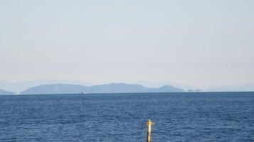 seashore1124e.jpg