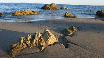 seashore1124h.jpg
