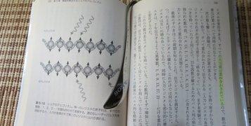 sony_siori3.jpg