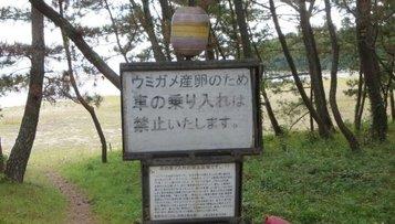 yumesaki32.jpg